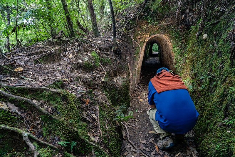 Broken Hills Coromandel New Zealand