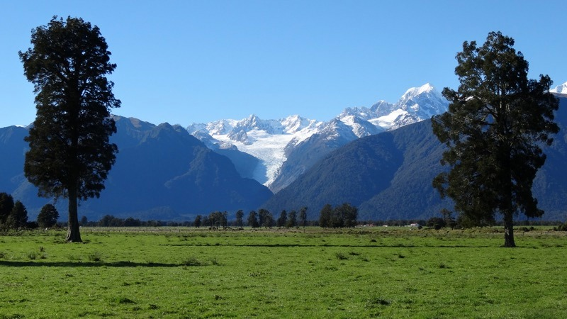 Fox Glacier in New Zealand South Island