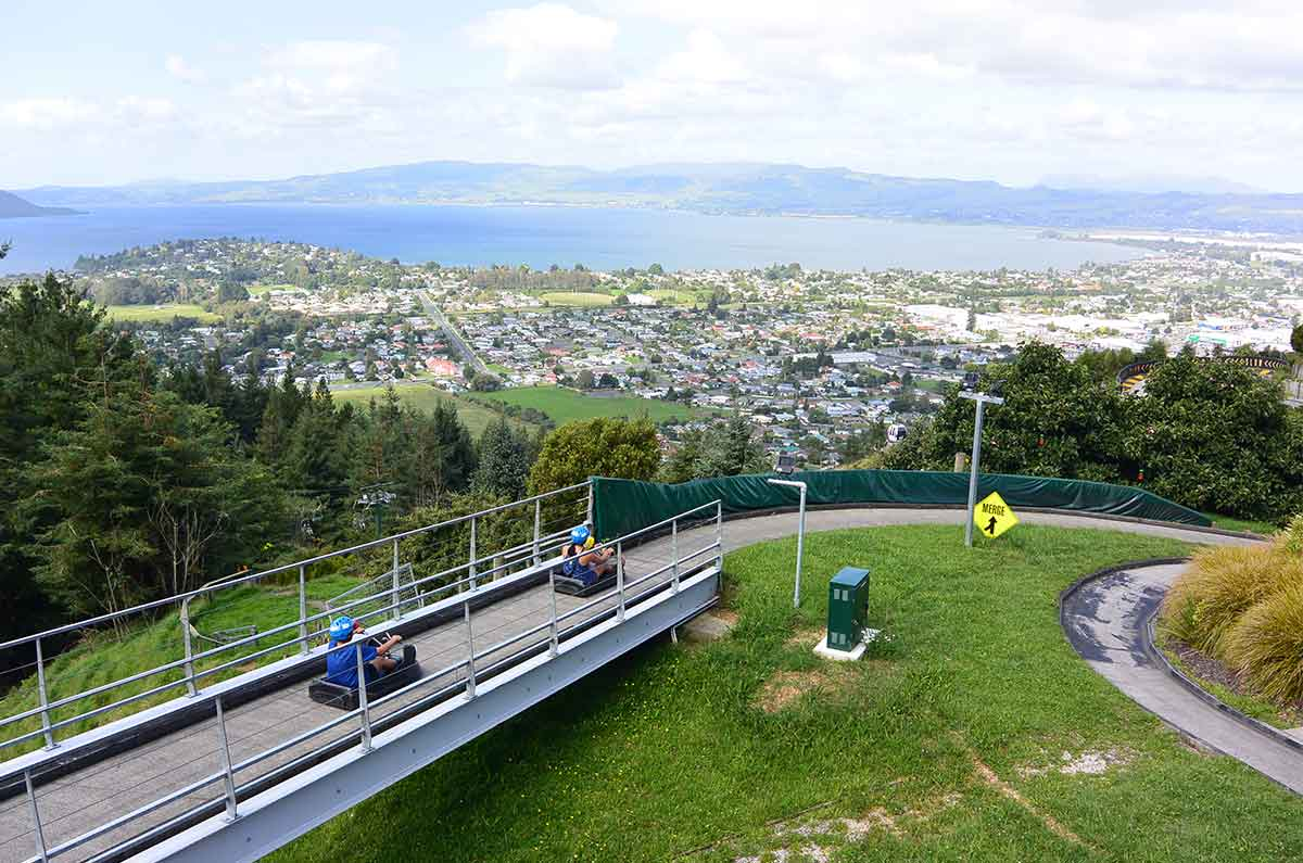 Luge-at-Rotorua