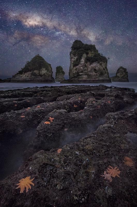 Motukiekie West Coast.jpg