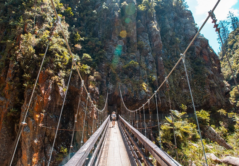 Karangahake Gorge in the Coromandel New Zealand