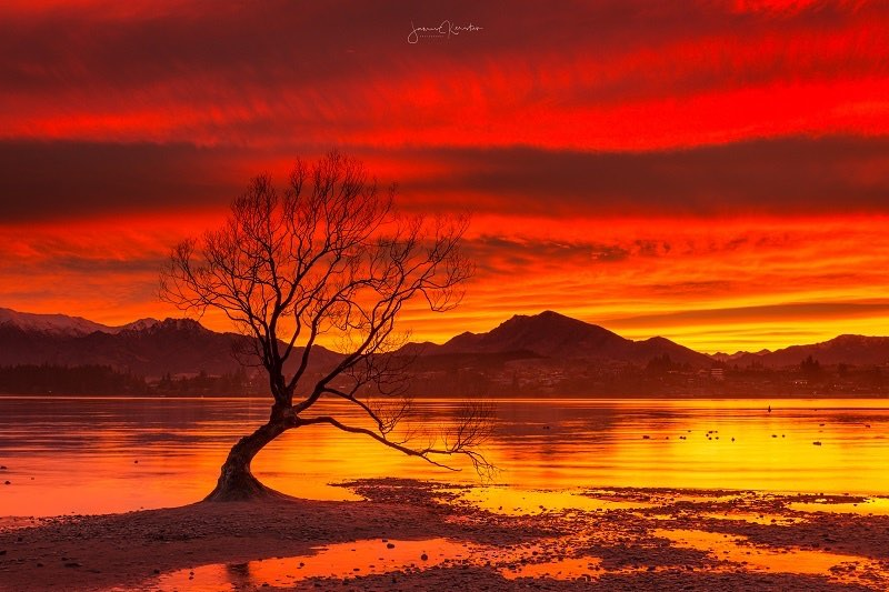 Red sunrise at Lake Wanaka