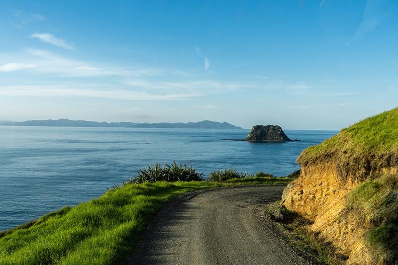 Road less travelled near Port Jackson New Zealand