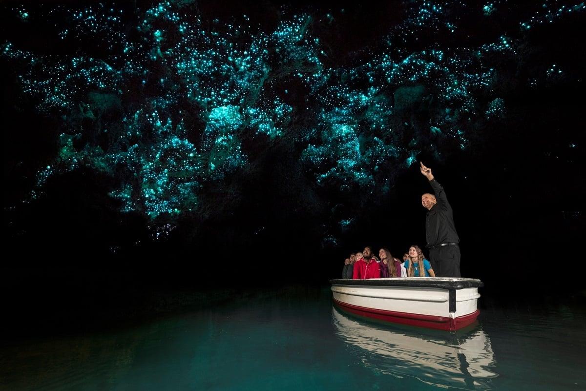 Waitomo Glowworm Caves Waikato