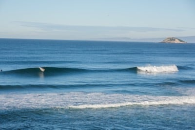 4. surfing-perfect-lineup-dunedin.jpg