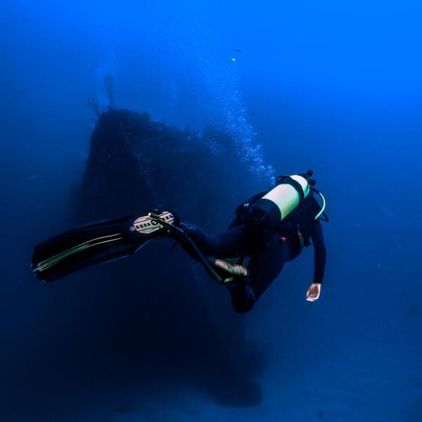 Diving the Rainbow Warrior, Northland, NZ