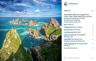 Environment, New Zealand, travel,