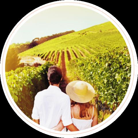 Couple visiting an NZ vineyard