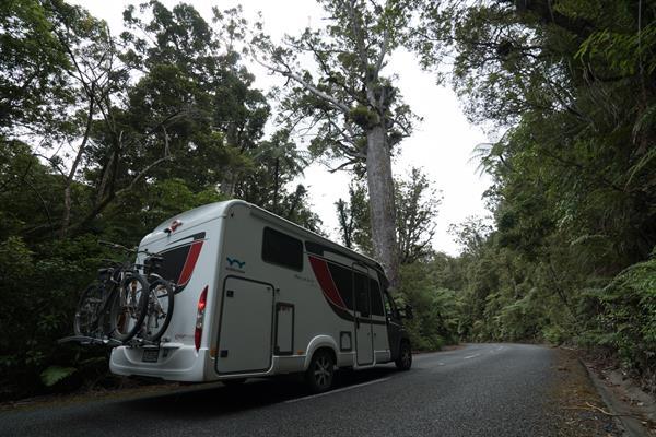Wilderness motorhome at Waipoua Forest, Kauri Coast